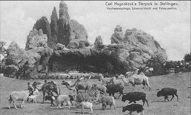 """a history of zoos History visit the little zoo in the park in 1927, """"the little zoo in the park,"""" was born the william land park zoo opened its gates on june 2nd, 1927 as the city of sacramento brought together an assortment of animals from various local parks."""