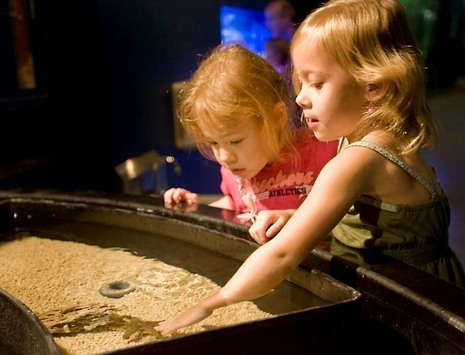 One touch tank