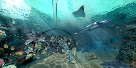 The Eco-Zoo's Indian Ocean Exhibit