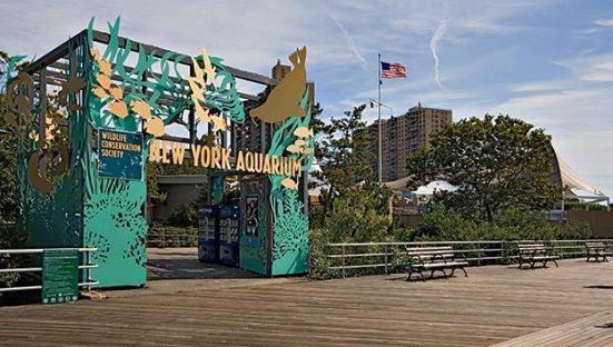 ny-aquarium_51142