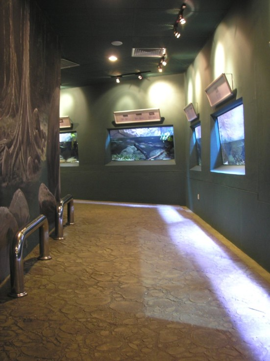 River Exhibits