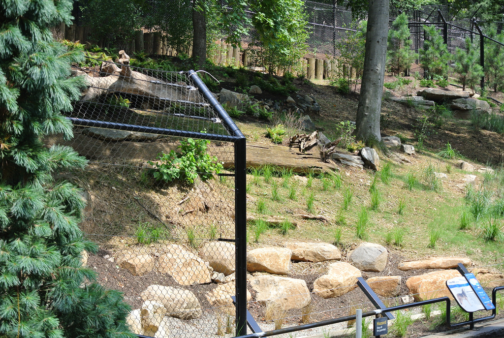 how to build a zoo exhibit