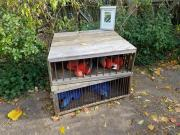 Poor macaws!! Interpretive about illegal pet trade